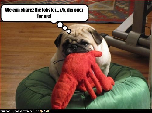 We can sharez the lobster... j/k, dis onez for me!