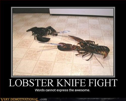 lobster,awesome,knife fight