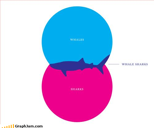 animals sharks venn diagram whales - 3284619776