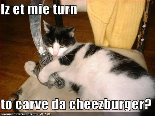 Cheezburger Image 3285244928