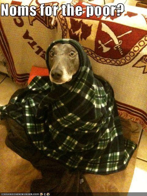 beg blanket noms poor whatbreed