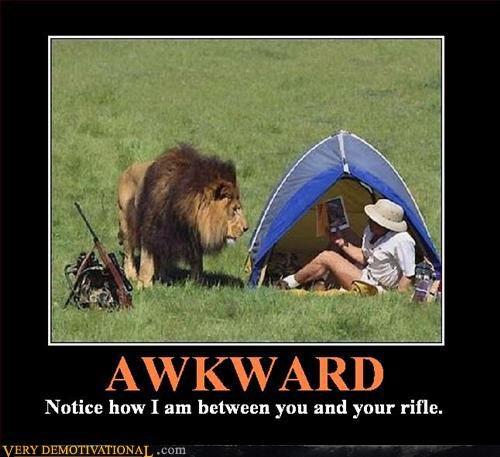 Awkward,demotivational,demotivational poster,lion,rifle,safari,Terrifying