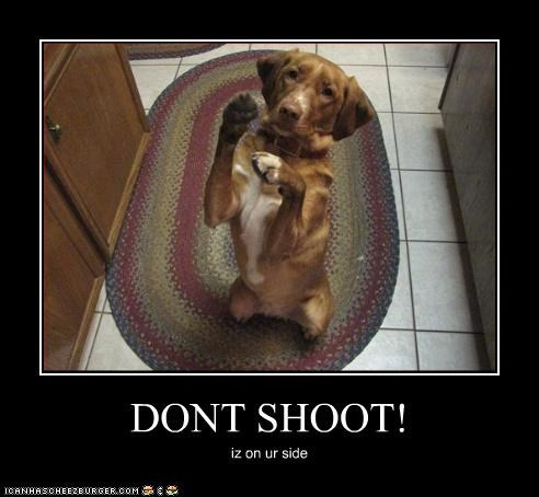 DONT SHOOT! iz on ur side