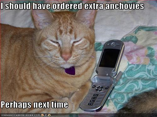 I Should Have Ordered Extra Anchovies Perhaps Next Time I Can Has