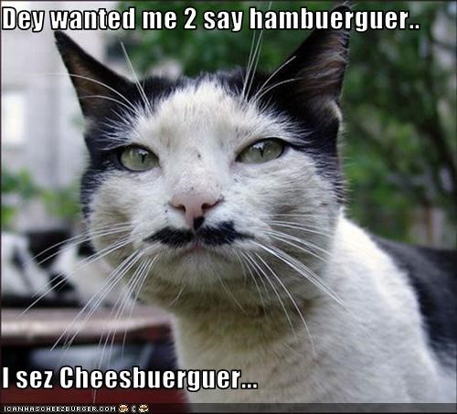 Cheezburger Image 3294962944