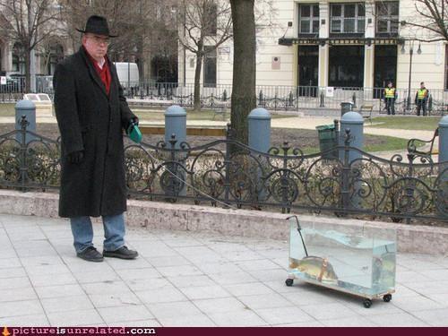 fish old people walking wtf - 3295325696