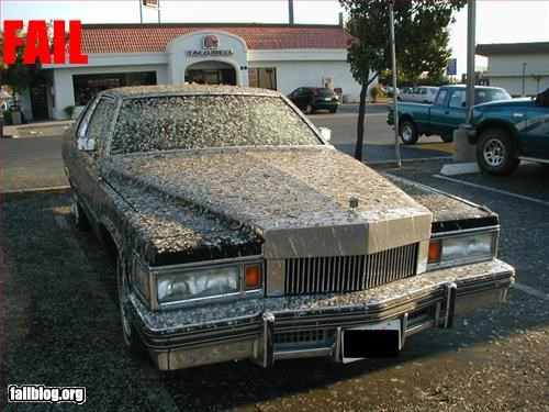 bird cars droppings g rated parking space