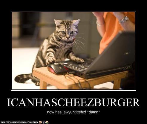 Cheezburger Image 3301561600