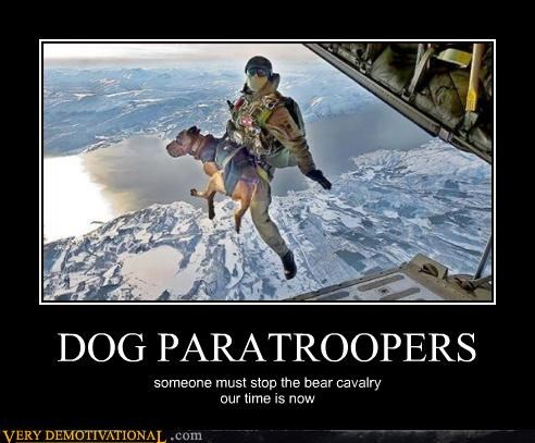 airplanes,army,Battle,bear calvary,dogs,honor,Pure Awesome