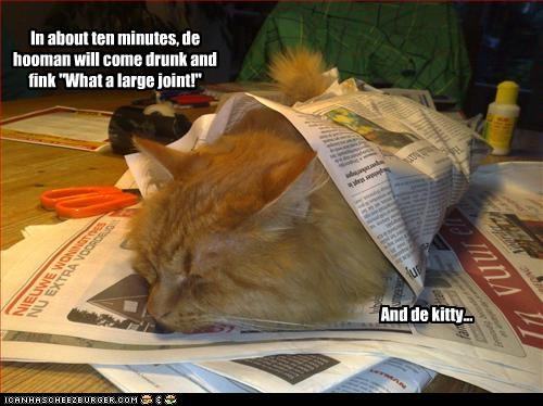 """In about ten minutes, de hooman will come drunk and fink """"What a large joint!"""" And de kitty..."""