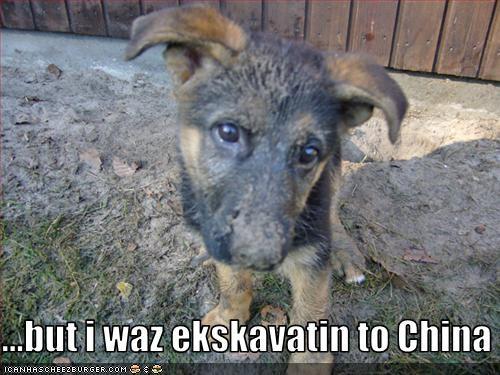 China digging dirty german shepherd hole mud puppy - 3302747392