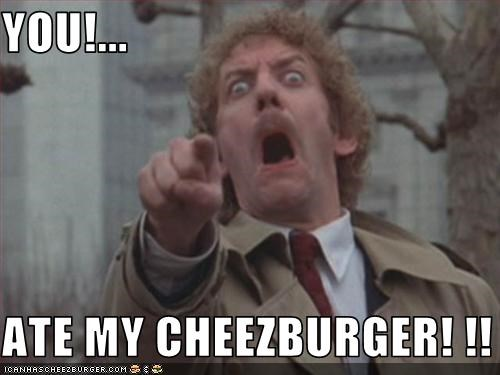Cheezburger Image 3302861056