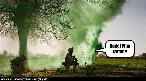Cheezburger Image 3302934272