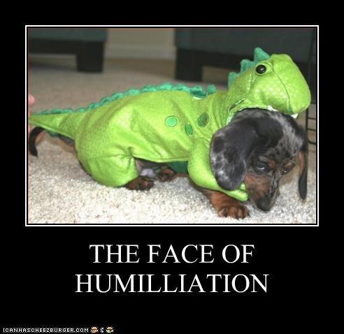 costume,dachshund,dinosaur,humiliation,Sad