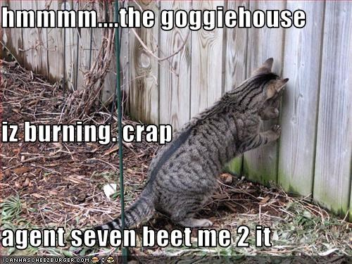 hmmmm....the goggiehouse  iz burning. crap agent seven beet me 2 it