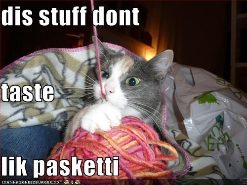 confused nom nom nom pasketti string - 3306478848