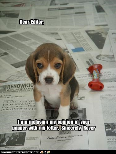 Dear Editor, I am inclosing my opinion of your papper with my letter, Sincerely Rover