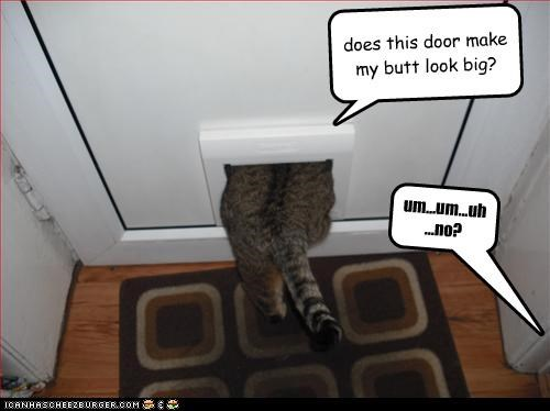 does this door make my butt look big? Cleverness Here um...um...uh ...no?