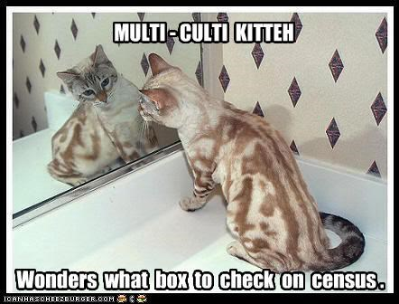 MULTI - CULTI KITTEH Wonders what box to check on census .