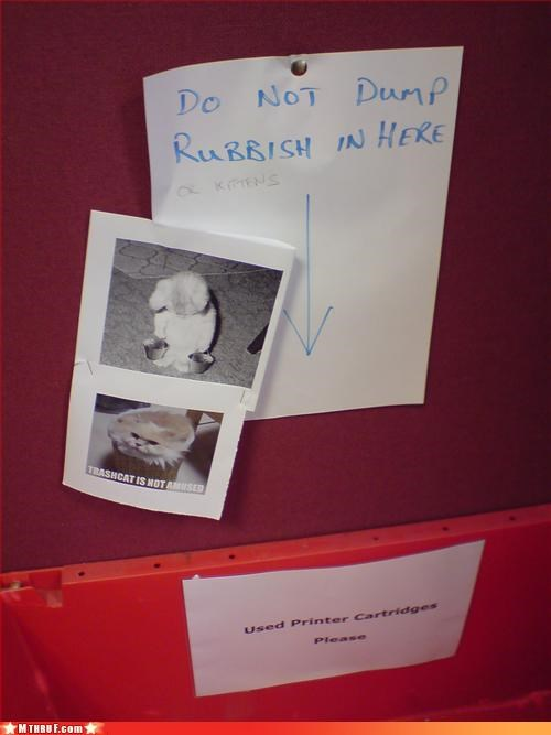 awesome co-workers not boredom creativity in the workplace cubicle boredom cubicle prank dickhead co-workers dickheads graffiti kitten lolcats not funny paper signs passive aggressive sass screw you signage try again weak joke wiseass - 3308940544