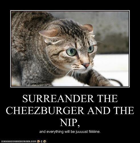 Cheezburger Image 3310565376