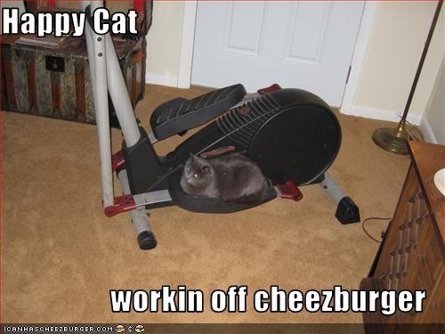 Cheezburger Image 3310667008