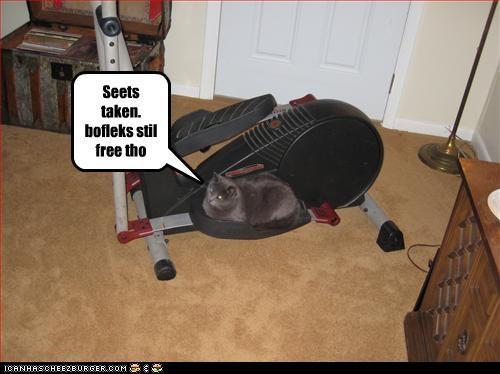 Cheezburger Image 3310834176
