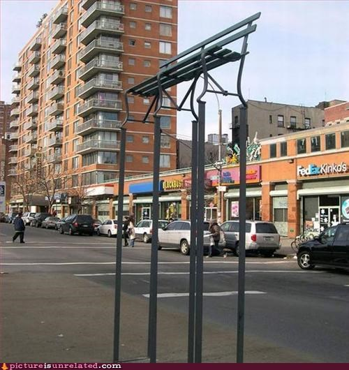art,bench,for the birds,useful,wtf