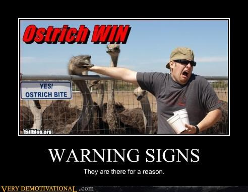 ouch sign read ostrich - 3311662592