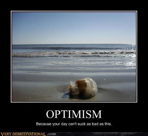 screwed optimism jellyfish - 3313595904