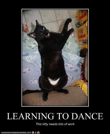 LEARNING TO DANCE This kitty needs lots of work