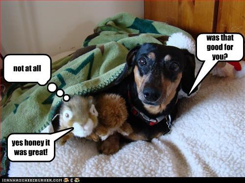Cheezburger Image 3314354432