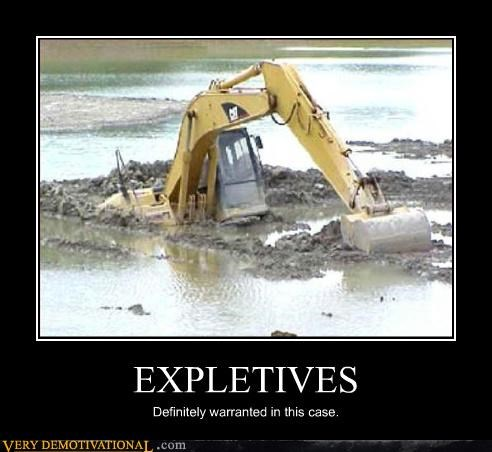 crane cursing demotivational expletives Sad water - 3317934848