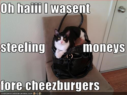 Cheezburger Image 3319834112