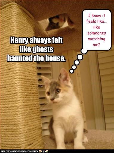 I know it feels like... like someones watching me? Henry always felt like ghosts haunted the house.