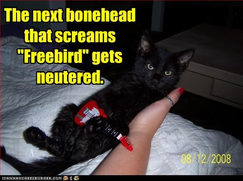 """I don't do requests The next bonehead that screams """"Freebird"""" gets neutered."""