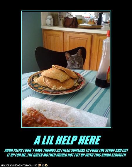 A LIL HELP HERE AUGH PEEPS I DON`T HAVE THUMBS SO I NEED SOMEONE TO POUR THE SYRUP AND CUT IT UP FOR ME..THE QUEEN MOTHER WOULD NOT PUT UP WITH THIS KINDA SERVICE!!