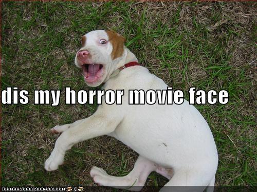 film grass movies pitbull - 332430080