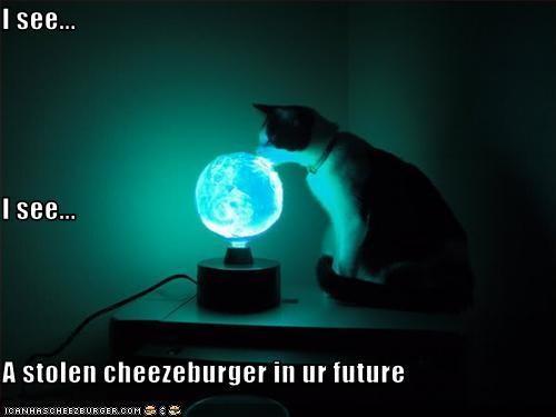 Cheezburger Image 3325151488