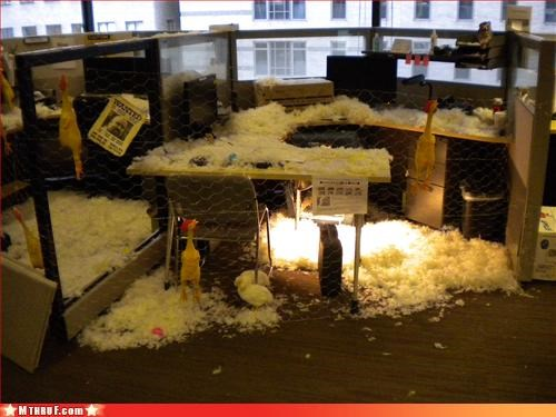 awesome awesome co-workers not boredom chickens clever creativity in the workplace cubicle boredom cubicle prank epic ergonomics ingenuity mess osha paper signs prank pwned sass screw you win wiseass - 3326515712
