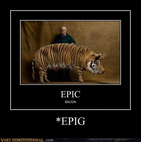 bacon demotivational epic EPIG pig Pure Awesome Sad - 3333022720