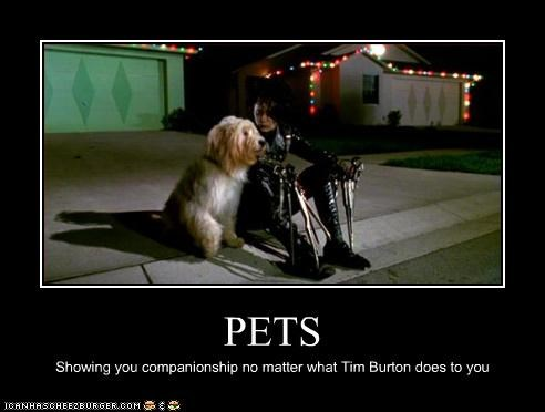 companionship dogs Edward Scissorhands Johnny Depp pets tim burton - 3333113600