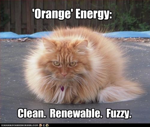 'Orange' Energy: Clean. Renewable. Fuzzy.