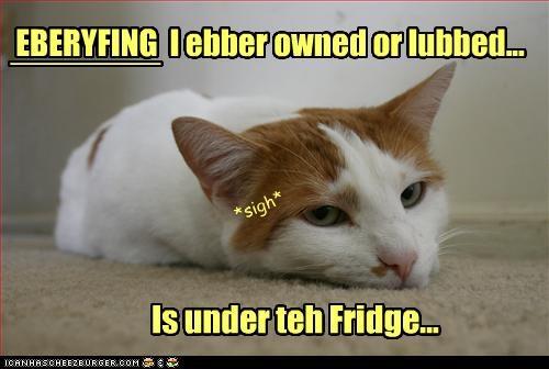 fridge Sad toys want - 3334891008