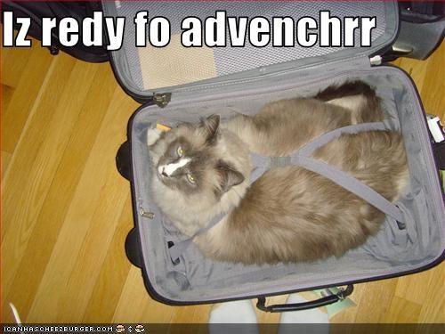 adventure plotting suitcase - 3338050304