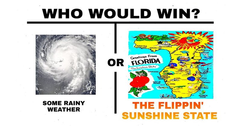 Collection of dank memes, lots of Hurricane Irma jokes.