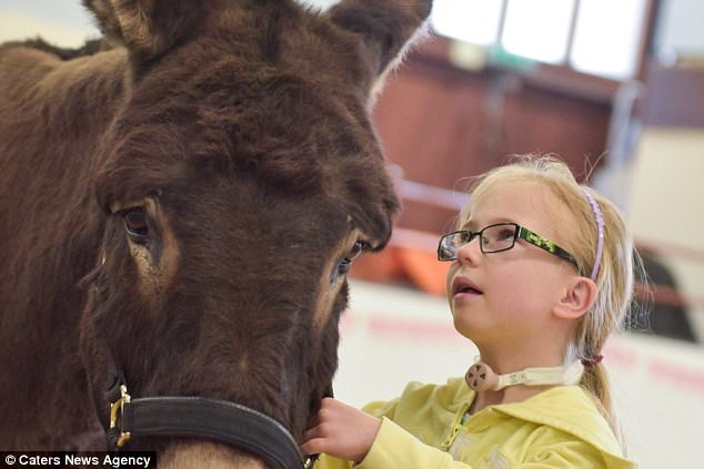 Theraphy donkey helps mute girl say her first words