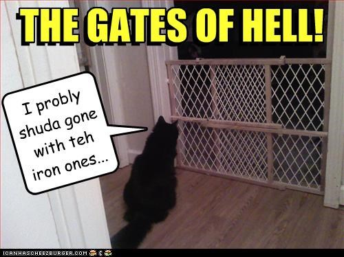 basement cat,gates,hell