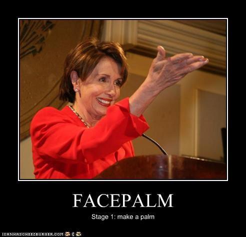 facepalm Nancy Pelosi - 3346859776