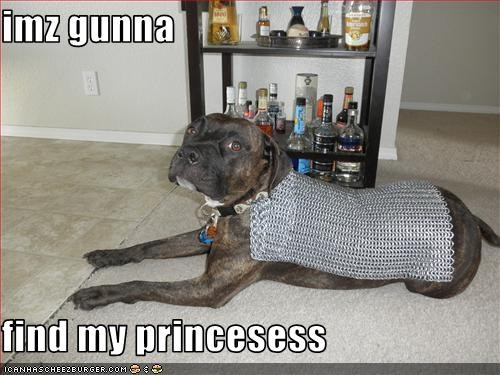 armor chainmail hero pit bull - 3350367488